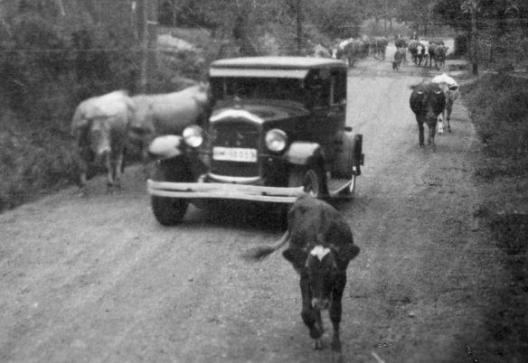 Opel_12-50_PS_oder größer_um_1928_Ausschnitt