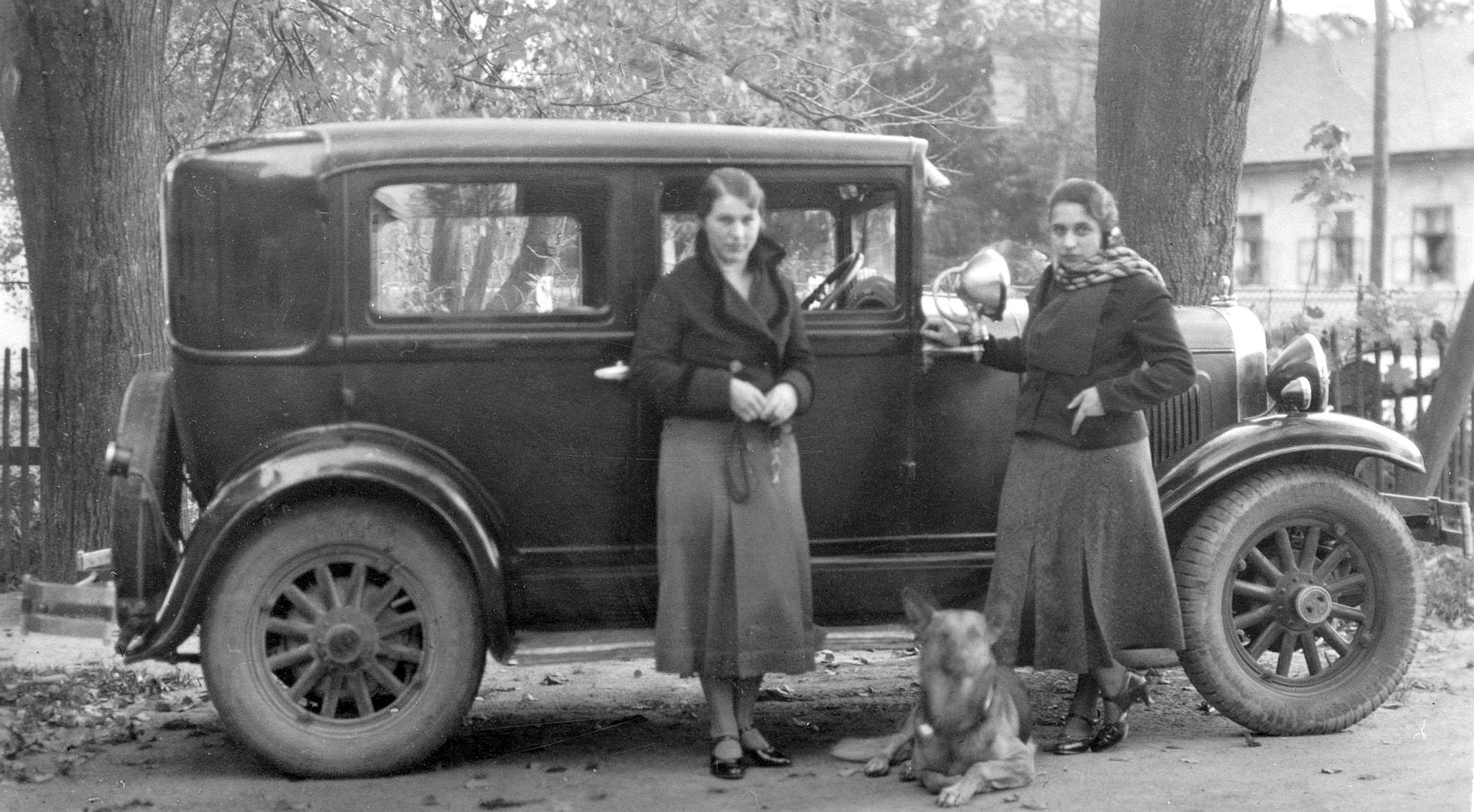 whippet_1929_breitenfurt_10-1934_galerie